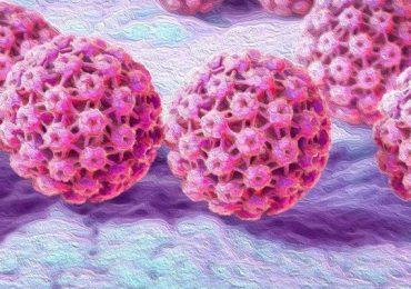 Genital Siğil (HPV)